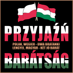 Day of Polish-Hungarian Friendship (March 23-2019) by kinga-saiyans