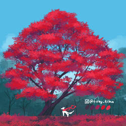 Red Maple tree - Daily Tree day 9