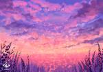 Pink Sky by fireytika