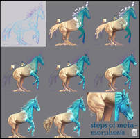Step By Step Metamorphosis by JanaW