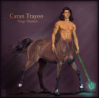Centaur - Mage Hunter by JanaW