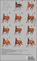 Step By Step Wildhorse by JanaW