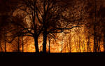 Silhouettes Burning