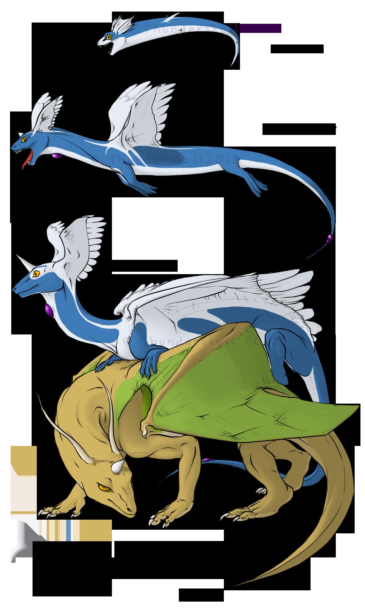 Dratini's Evolution Chart : pokemon