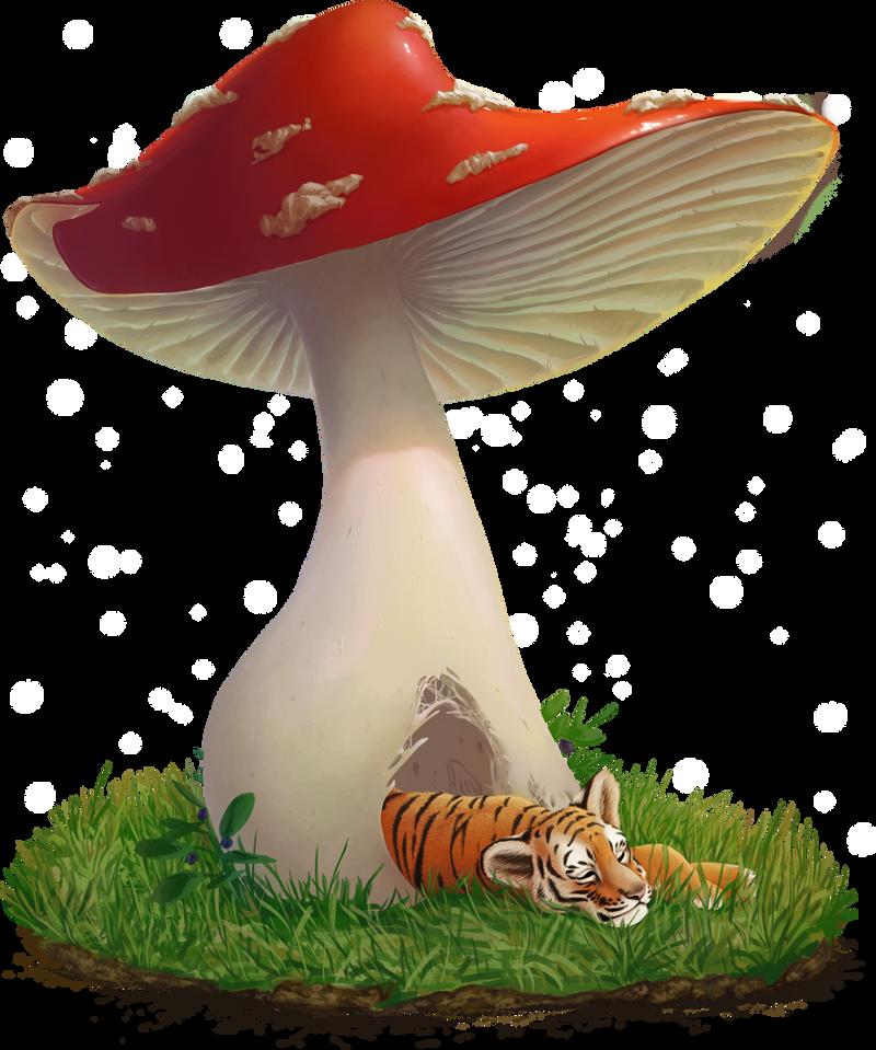 Under a cap by HaanPere