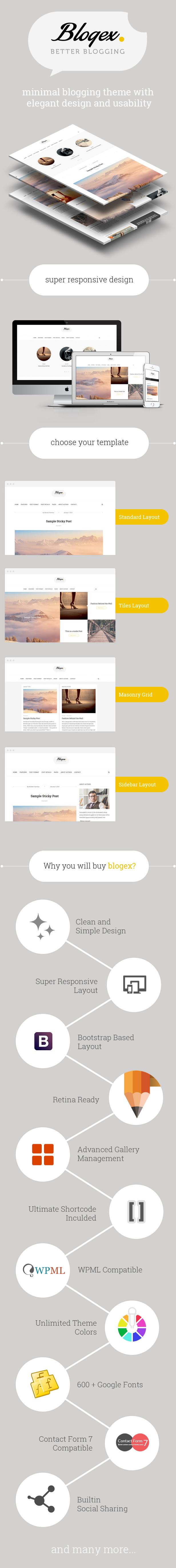 WordPress theme Blogex - Minimal Responsive Wordpress Blog Theme (Personal)