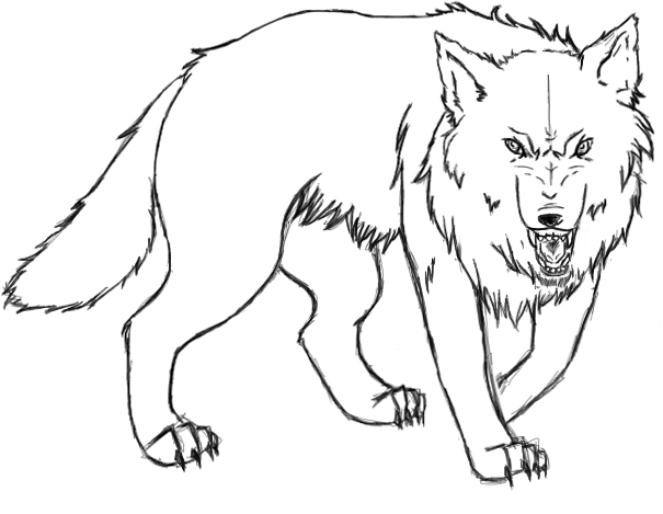 Angry Wolf Cartoon Drawing