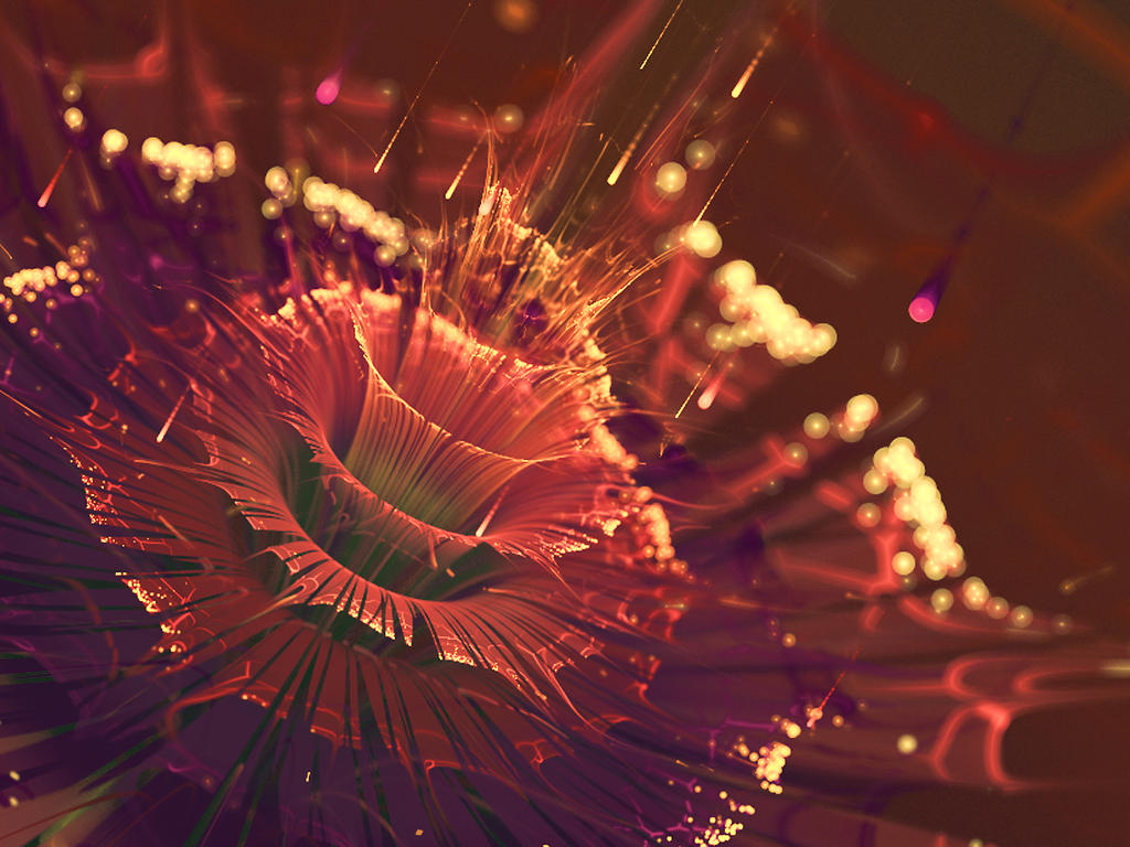 Sunset Flower by Stufferhelix