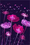 Pink Summer Dream