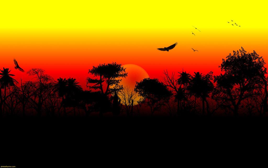 wild dusk by abaldwin