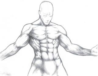 Anatomy Male Sketch
