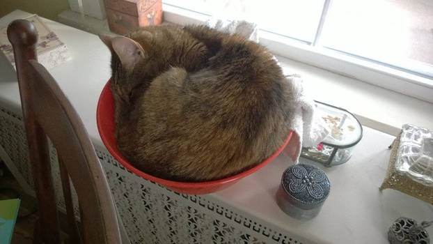 In a Bowl