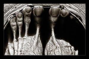 Bronze Feet in Red Wine by joelht74