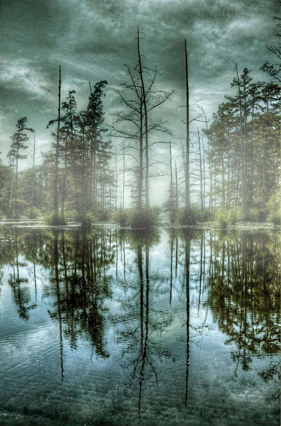 Foggy Lake by joelht74