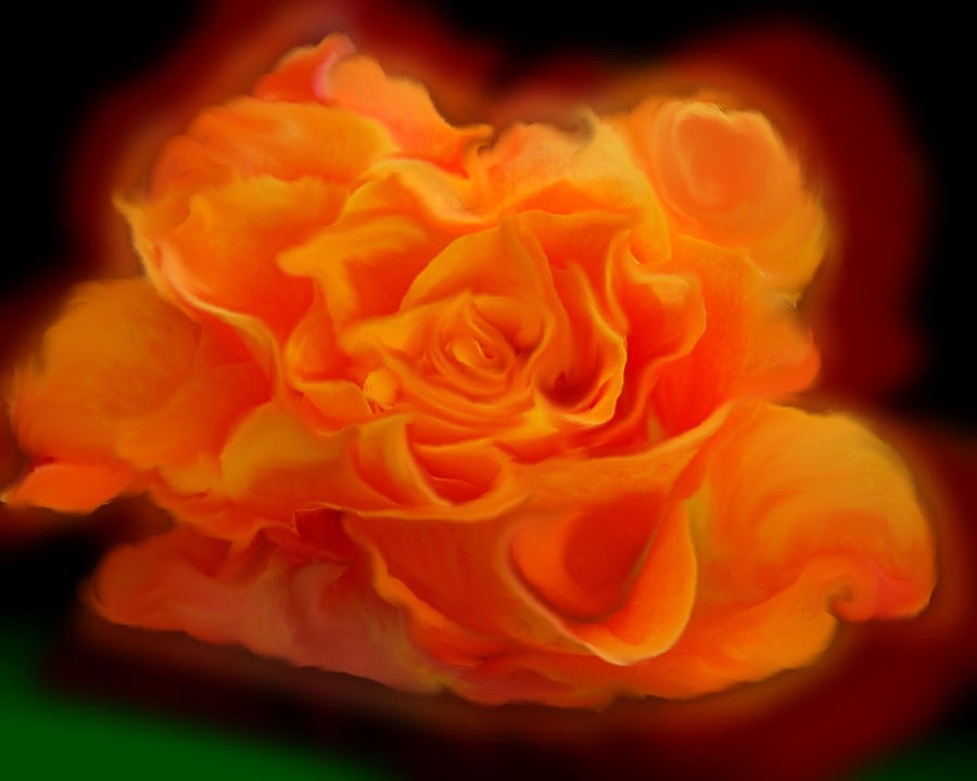 Orange Pastel Rose by PeterPawn