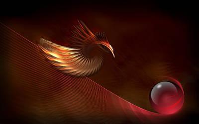 Bird Of Prey by PeterPawn