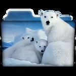 Polar Bears ICON-Folder
