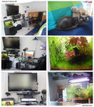 My Room 09'