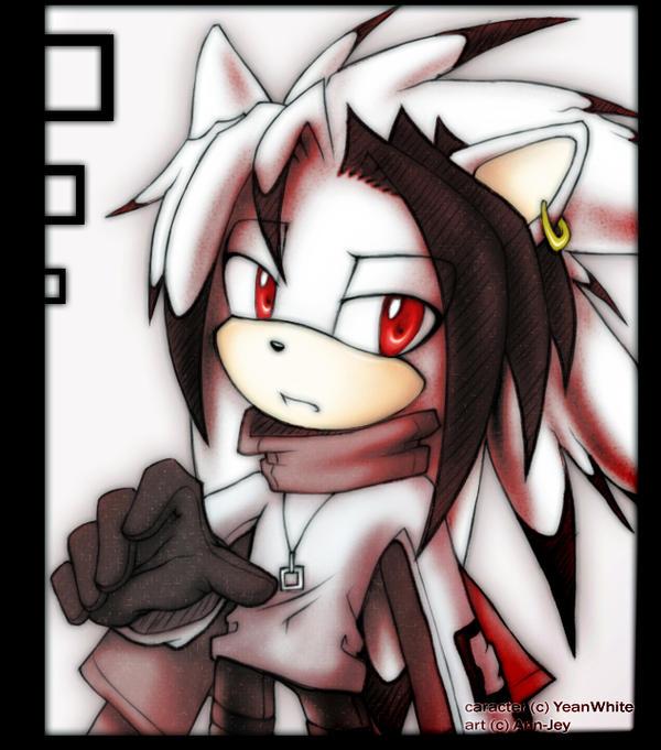 Dero The Hedgehog Dero White by Ann-Jey on