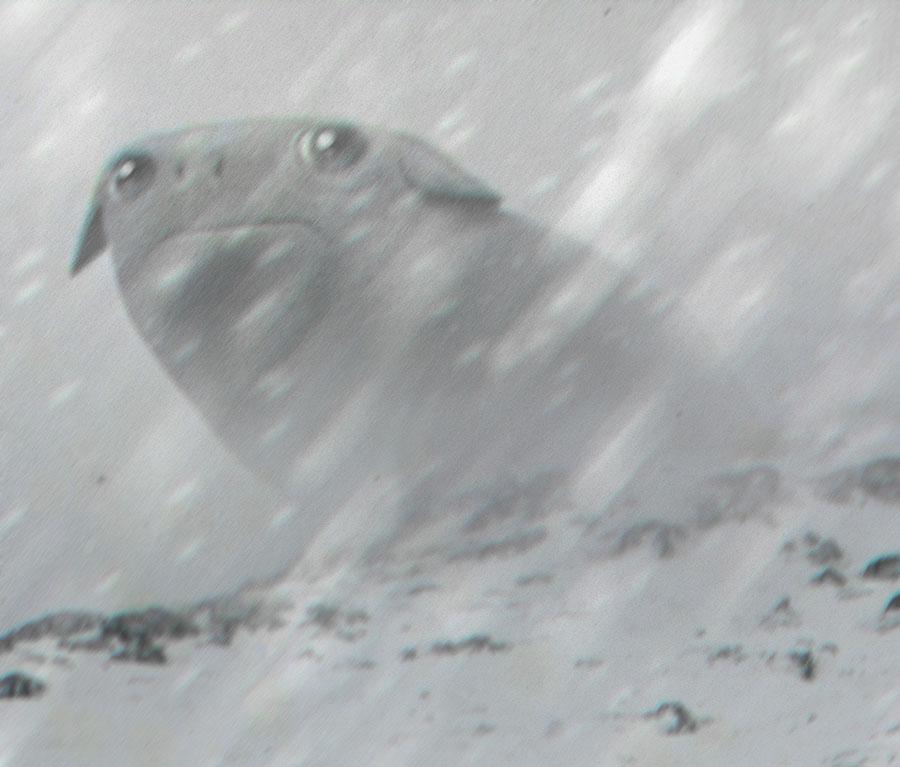Nieve creature by peerro