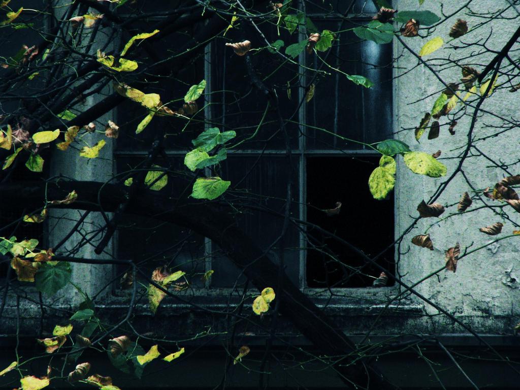 dark window by rmusic06 on DeviantArt