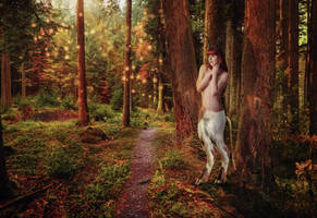 Mystic creature from the forest by mattze87