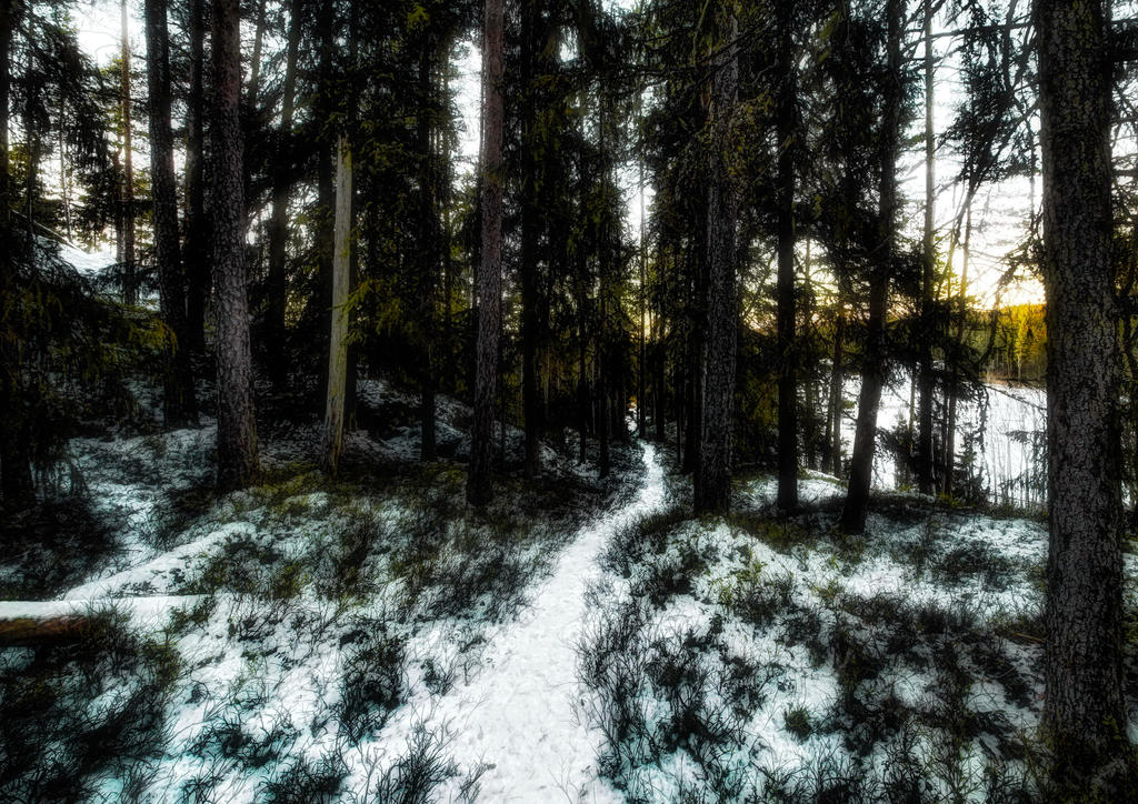 winter path by Son-of-Incogneato