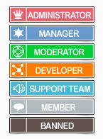 Simple flat ranks with icons