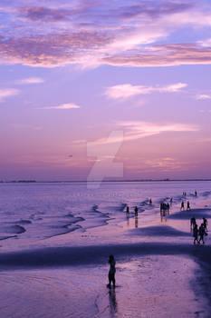 Purple Sets the Sky