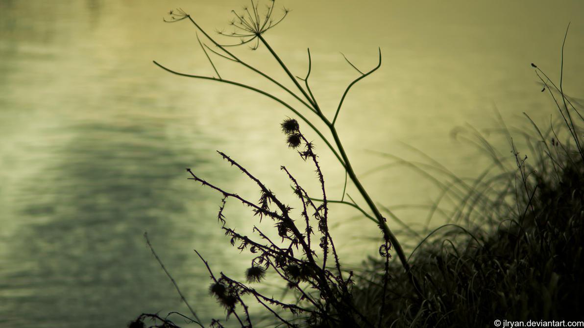 spring_begins_by_jlryan-d4r2gbt.jpg