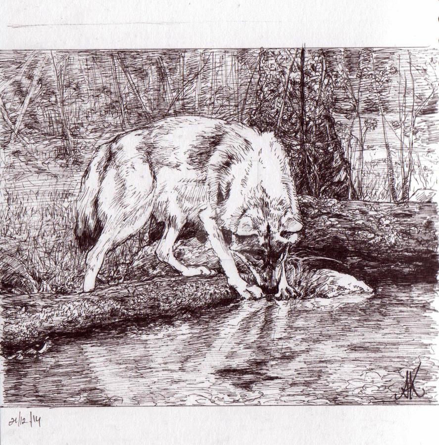 Wolfie by diabolic-sun