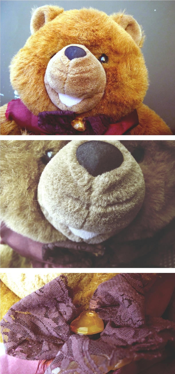 Dizi Bear by dinalovesart