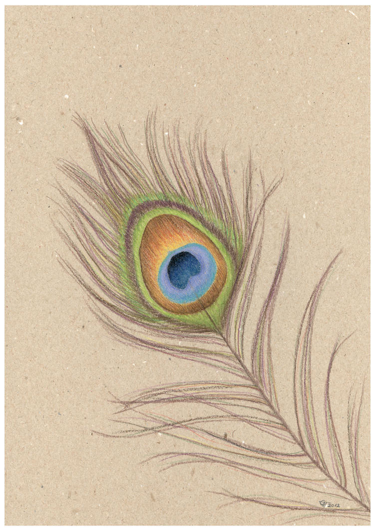 how to draw a peacock with pencil