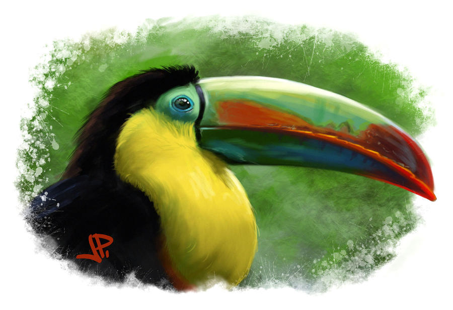 a study of the toucan The keel-billed toucan was one of two species of toucans that were documented by the team to prey upon eggs of ground-nesting birds in costa rica credit: virginia commonwealth university while.