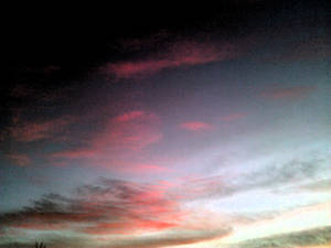 Dark Pinkish Skies