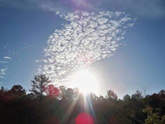 Morning Sunshine by mycanda