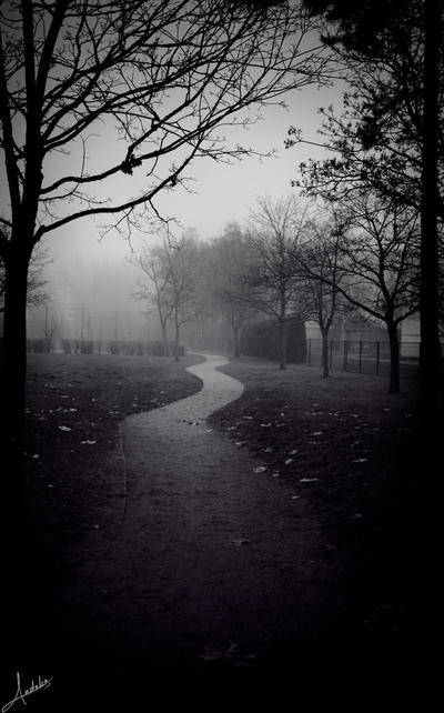 The last day of autumn by andokadesbois