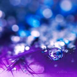 Delicate Bubble. by andokadesbois