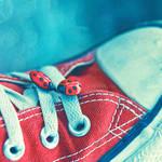 Ladybugs' Shoes.
