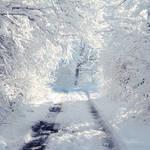 White Way. by andokadesbois