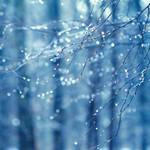 Winter Lights. by andokadesbois