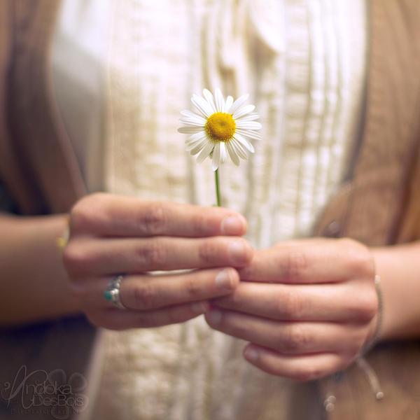 She Took Spring In Her Hands. by andokadesbois