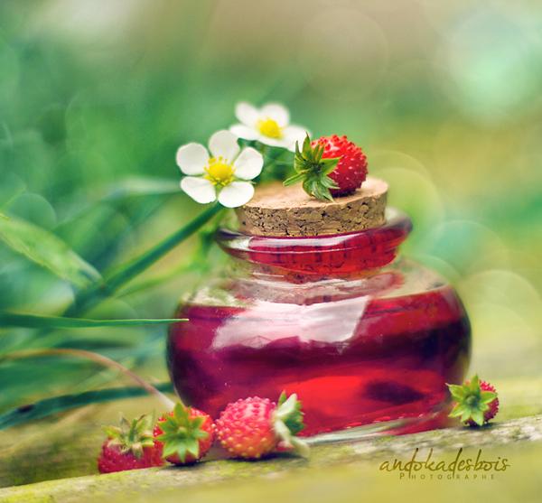 Strawberries. by andokadesbois