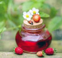 Strawberries' Ladybug. by andokadesbois