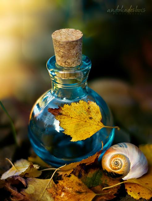 Как сделать эфирные масла для духи в домашних условиях