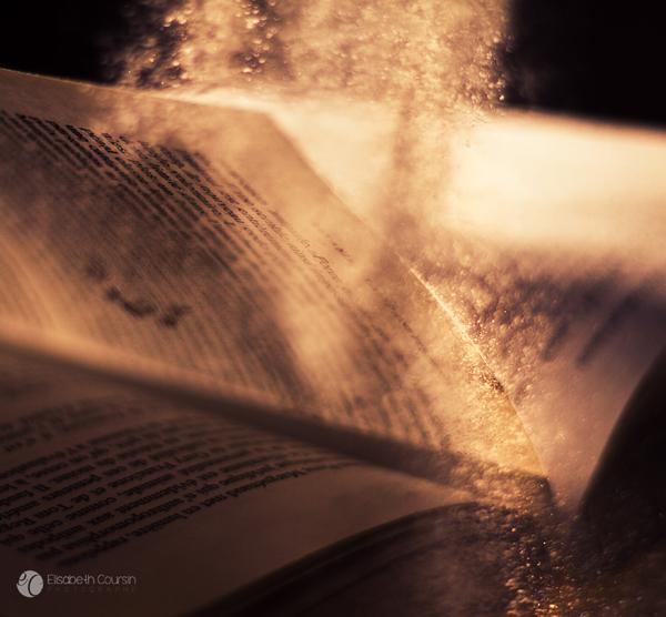 Golden Powder. by andokadesbois