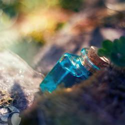 Hidden treasure.