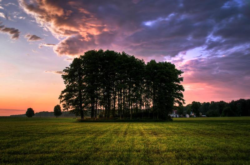 Summer II by agatkk