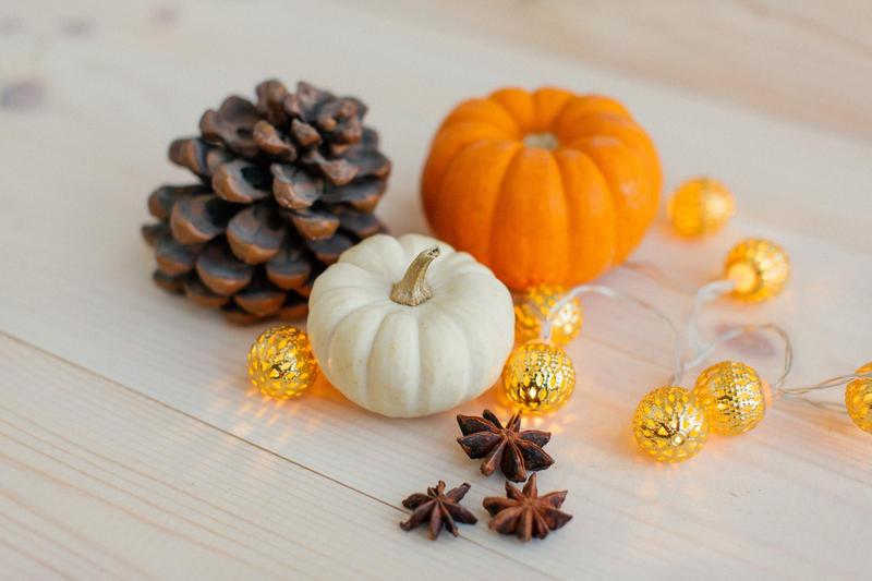 Pumpkin day by agatkk
