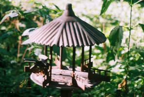 00000017_LittleBirdFeederHouse